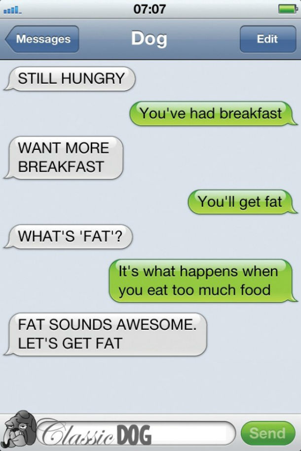 dog text lets get fat