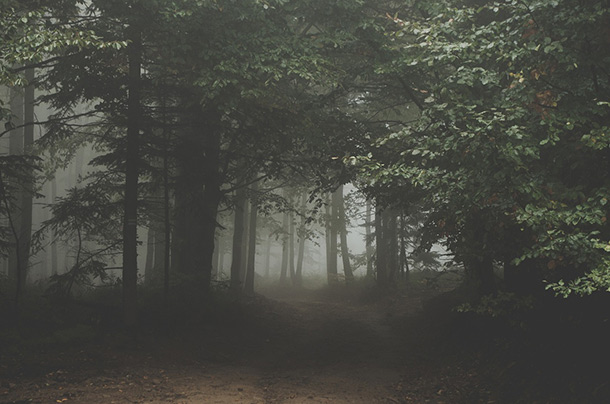 25 True Scary National Park Stories